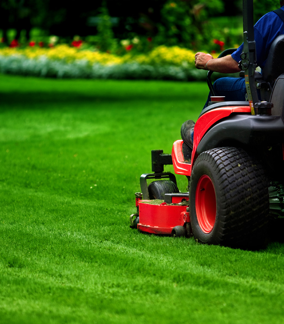 Lawn Service And Landscape: PRO EDGE LAWN CARE LLC